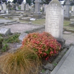 14th-may-in-the-cemetery-5_640x480
